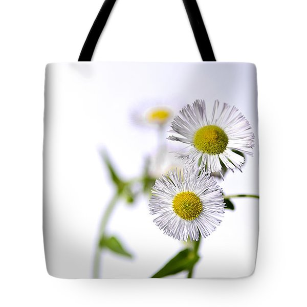 Dancing Daisy Tote Bag by LeeAnn McLaneGoetz McLaneGoetzStudioLLCcom