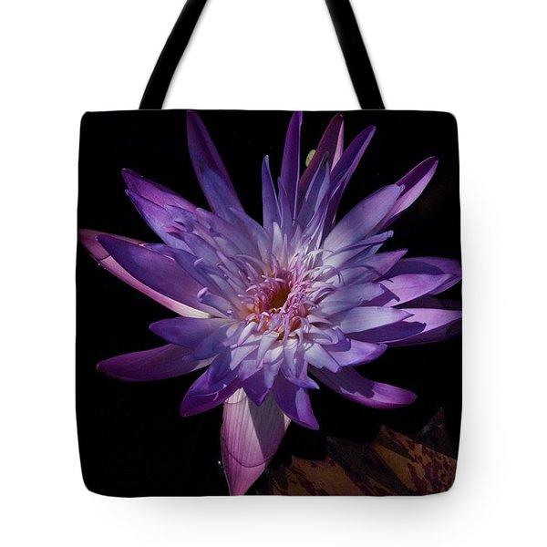 Dark Beauty Tote Bag by Joseph Yarbrough