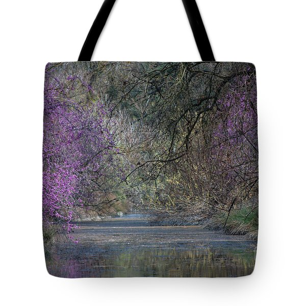 Davis Arboretum Creek Tote Bag by Agrofilms Photography