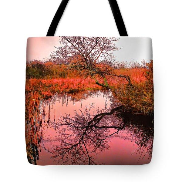 Dawn On The Marsh Tote Bag by Nick Zelinsky