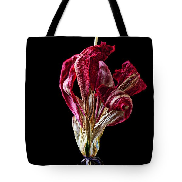Dead Dried Tulip Tote Bag by Garry Gay