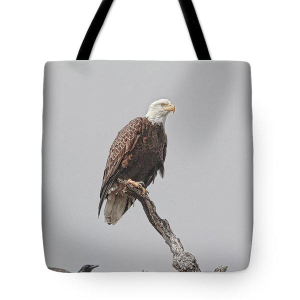 Dead Tree Pose Tote Bag by Deborah Benoit