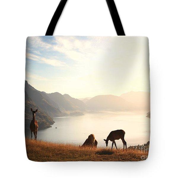 Deer at sunset Tote Bag by Pixel  Chimp