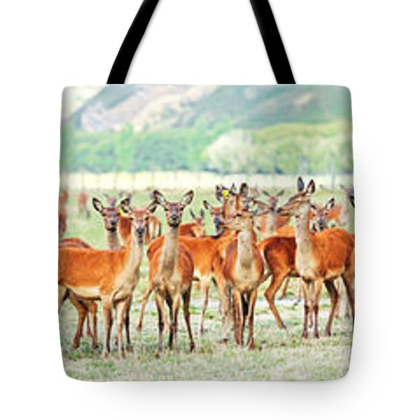 Deers Tote Bag by MotHaiBaPhoto Prints