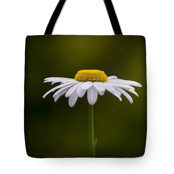 Defiant Daisy Tote Bag by Clare Bambers