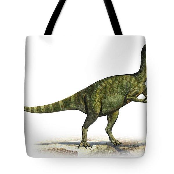 Deinocheirus Mirificus, A Prehistoric Tote Bag by Sergey Krasovskiy