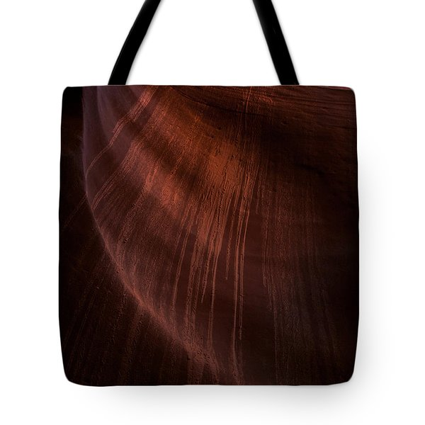 Desert Rain Tote Bag by Mike  Dawson