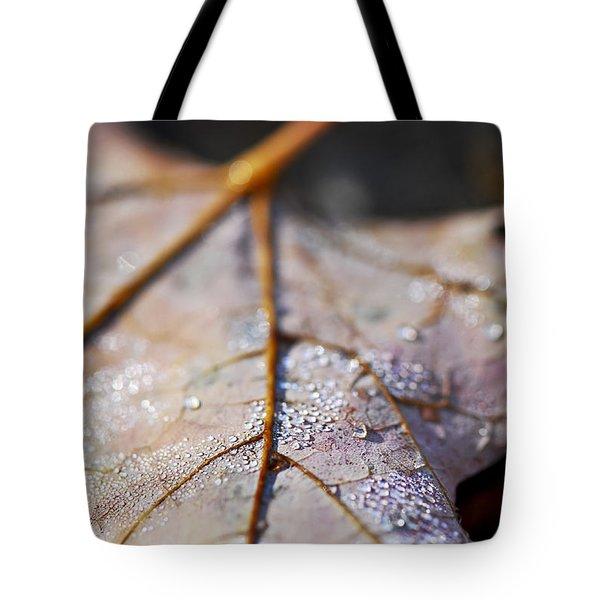 Dewy Leaf Tote Bag by Elena Elisseeva