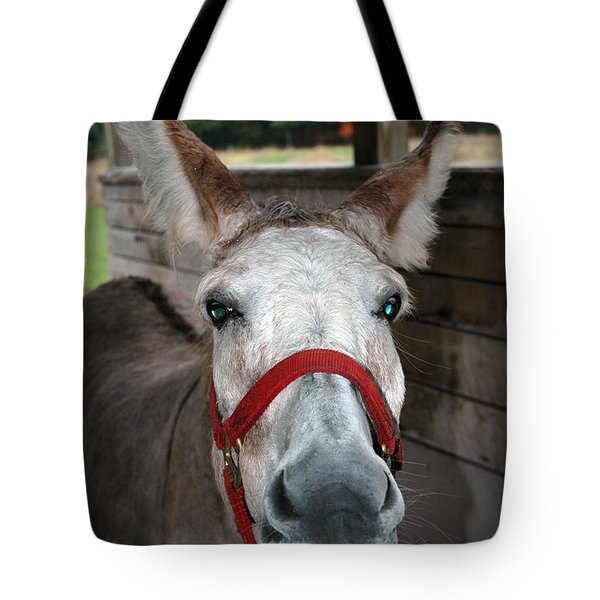 Did You Use The A Word Tote Bag by LeeAnn McLaneGoetz McLaneGoetzStudioLLCcom