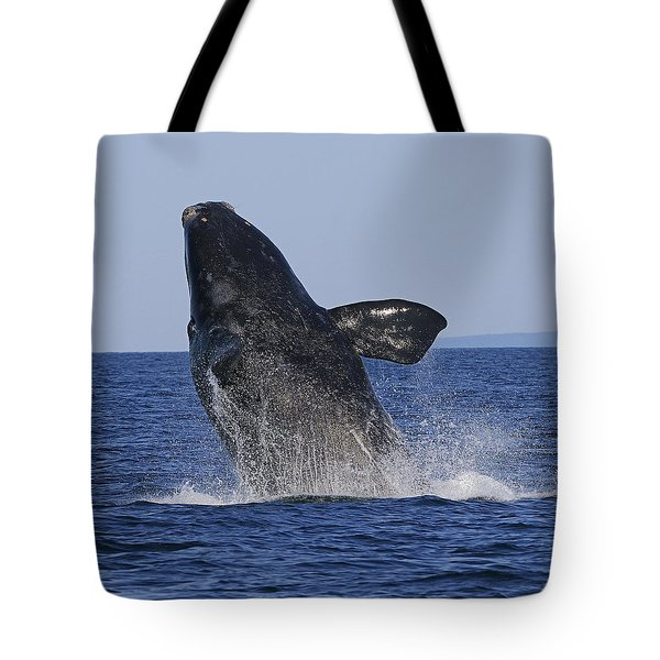 Discovering Another Dimension Tote Bag by Tony Beck