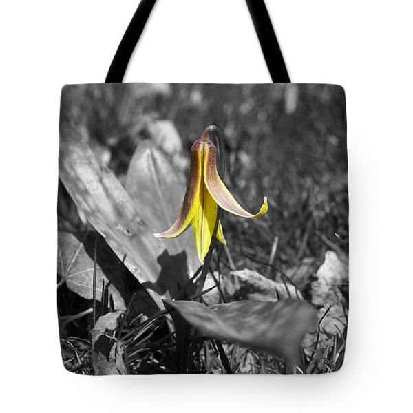 Dog Tooth Violet Tote Bag by Elaine Mikkelstrup
