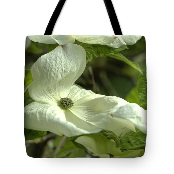 Dogwood Tote Bag by Rod Wiens
