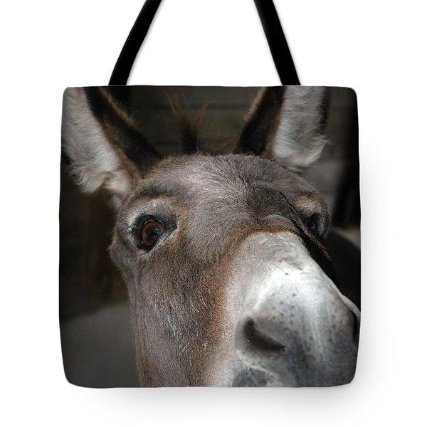 Donkey Sniffs Tote Bag by LeeAnn McLaneGoetz McLaneGoetzStudioLLCcom