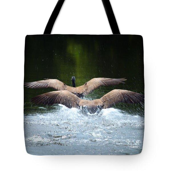 Double Landing Tote Bag by Karol Livote