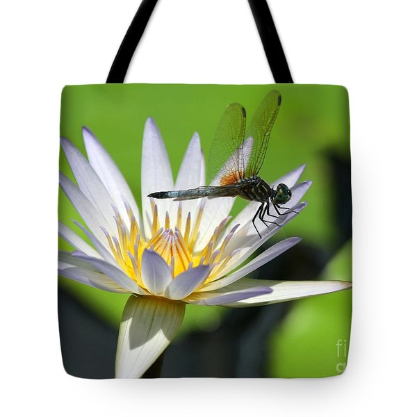 Dragonfly And The Water Lily Tote Bag by Sabrina L Ryan
