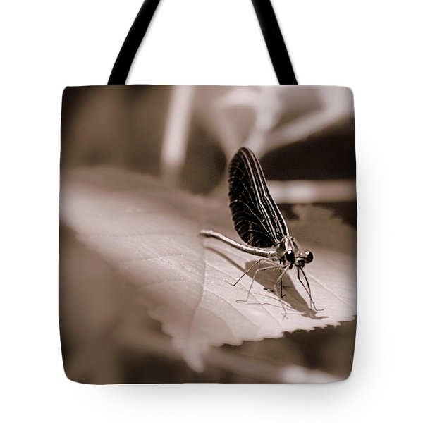 Dragons Dont Fly Tote Bag by Ed Smith