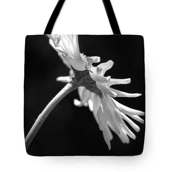 Dramatic Daisy Flower Black And White Tote Bag by Jennie Marie Schell