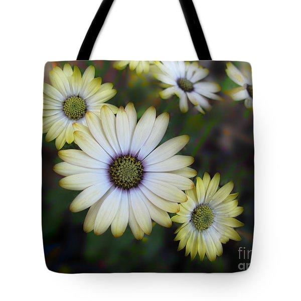 Dream Daisy Tote Bag by Arlene Carmel