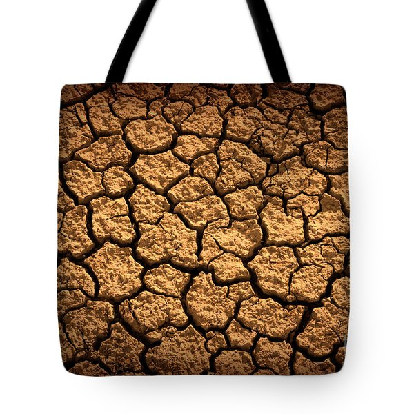 Dried Terrain Tote Bag by Carlos Caetano