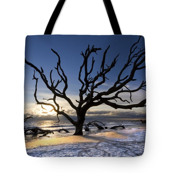 Driftwood Beach At Dawn Tote Bag by Debra and Dave Vanderlaan