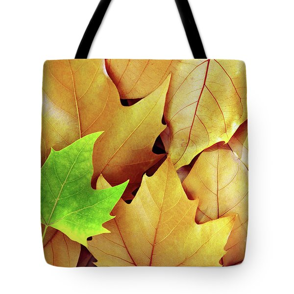 Dry Fall Leaves Tote Bag by Carlos Caetano