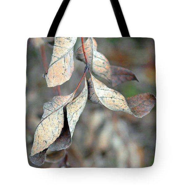 Dry Leaves Tote Bag by Lisa Phillips