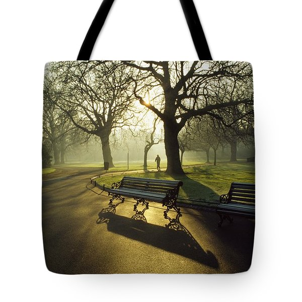 Dublin - Parks, St. Stephens Green Tote Bag by The Irish Image Collection
