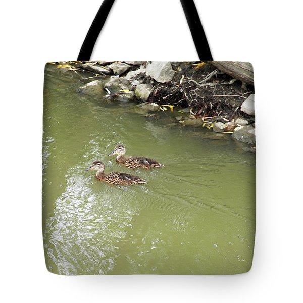 Duckling Pair Tote Bag by Corinne Elizabeth Cowherd