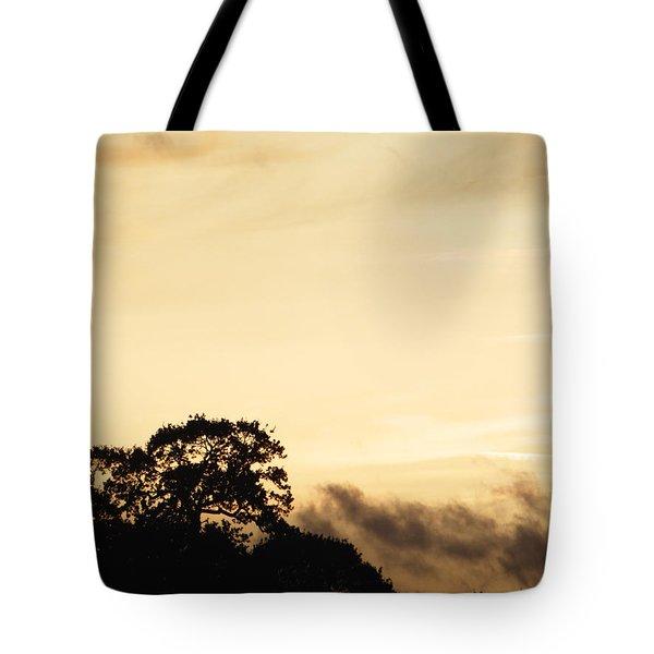 Dusk Forest  Tote Bag by Pixel Chimp