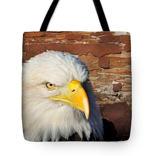 Eagle On Brick Tote Bag by Marty Koch