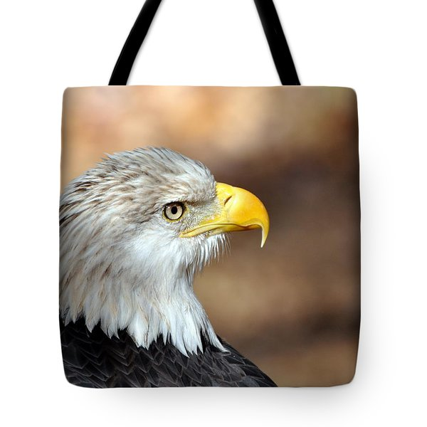 Eagle Right Tote Bag by Marty Koch