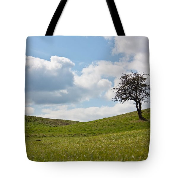 Early Spring Tote Bag by Semmick Photo