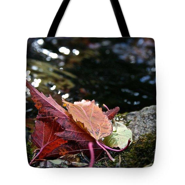 Edge Tote Bag by Susan Herber