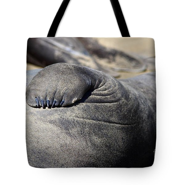 Elephant Seal Fin Nails . 7D16083 Tote Bag by Wingsdomain Art and Photography
