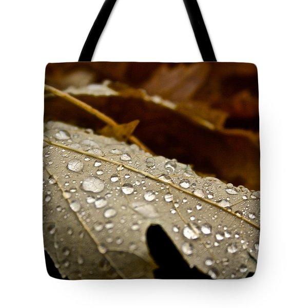 End Of Season Tote Bag by Susan Herber