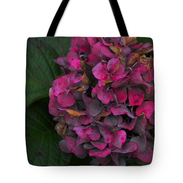 Endless Summer Tote Bag by JAMART Photography