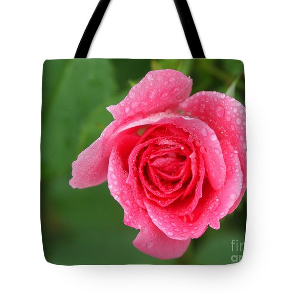 English Rose Tote Bag by Bonnie Sue Rauch and Photo Researchers