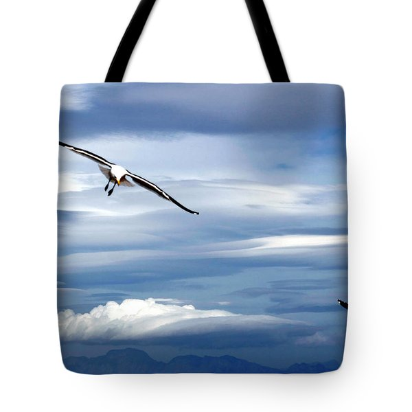 Enjoying The Sky Tote Bag by Andrew  Hewett