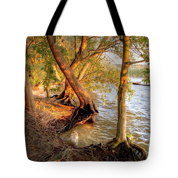 Evening At The Lake Tote Bag by Heiko Koehrer-Wagner