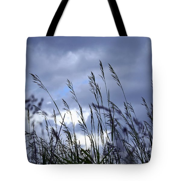 Evening Grass Tote Bag by Elena Elisseeva