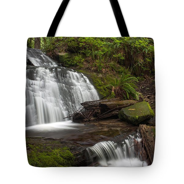 Evergreen Steps Tote Bag by Mike Reid
