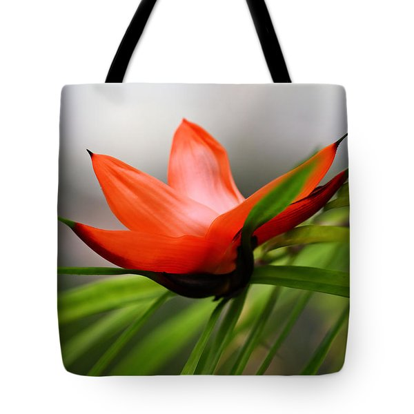 Exotic Tote Bag by Katherine White