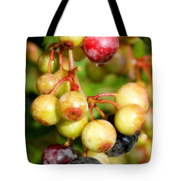 Expectation Tote Bag by Karen Wiles