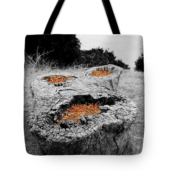 Faces In Nature Tote Bag by Cheryl Young
