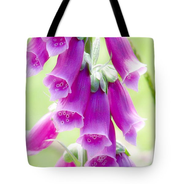 Faerie Bells Tote Bag by Rory Sagner