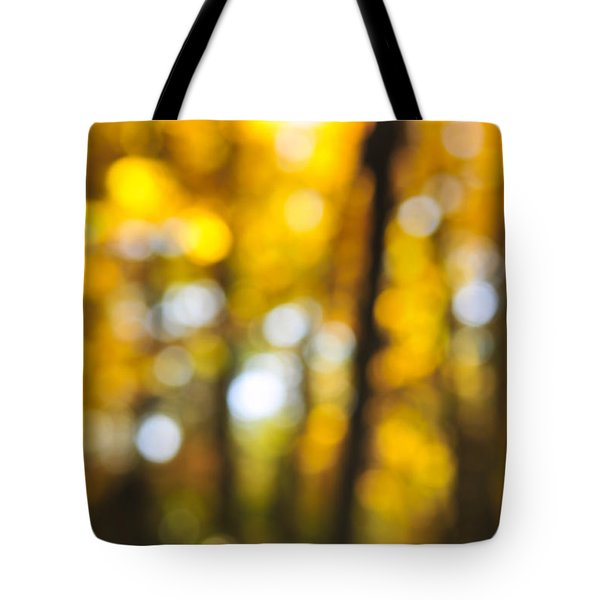 Fall Abstract Tote Bag by Elena Elisseeva