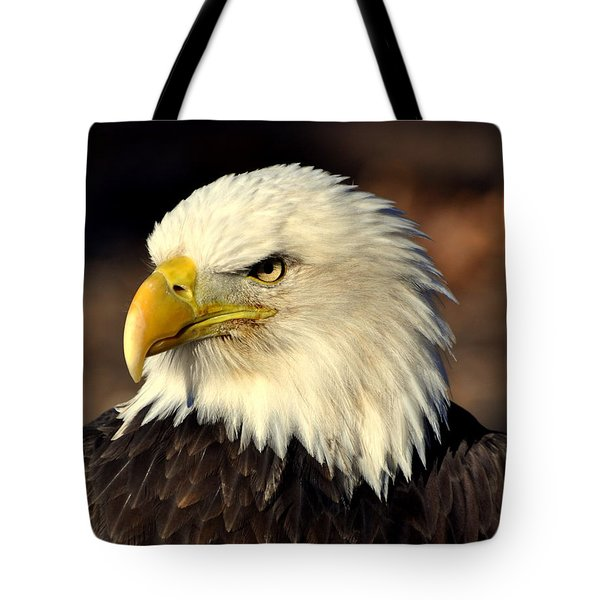 Fall Eagle 4 Tote Bag by Marty Koch