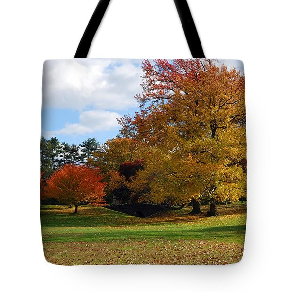 Fall Foliage Tote Bag by Lisa  Phillips