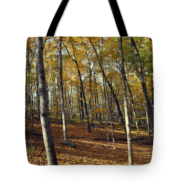 Fall In The Forest 1 Tote Bag by Marty Koch