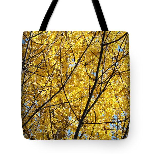Fall Trees art prints Yellow Autumn Leaves Tote Bag by Baslee Troutman Fine Art Photography